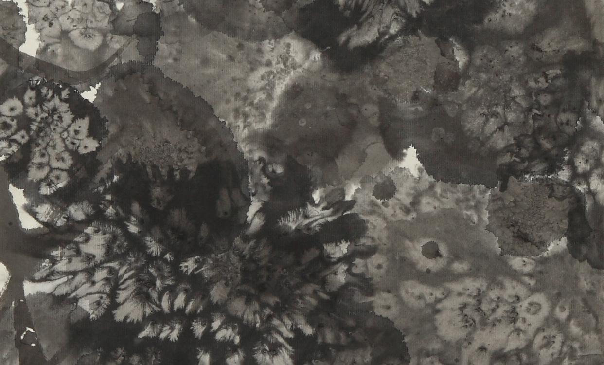 140 x 34, 2013
